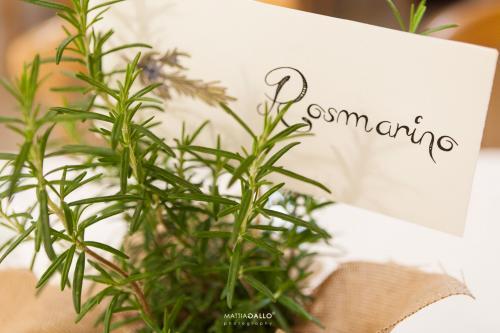 immagine-coordinata-matrimonio-acquarello-rosmarino